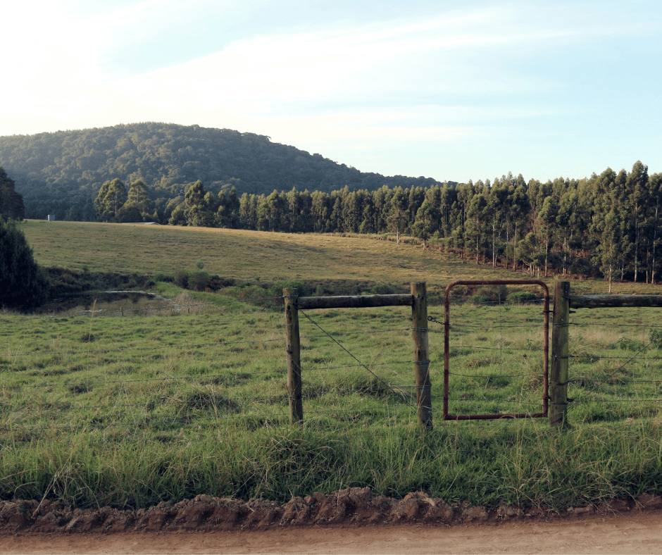 Lythwood Lodge, KwaZulu Natal Midlands
