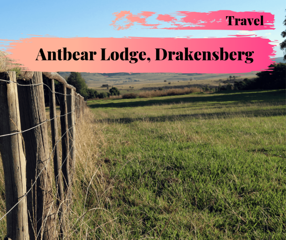 Antbear Lodge – VLOG